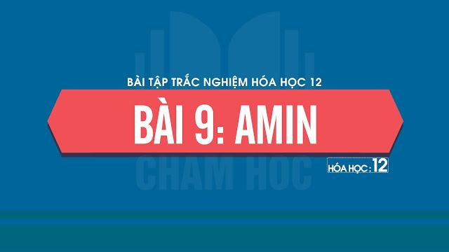 Bài tập trắc nghiệm Hóa 12 Bài 9: Amin