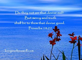 Proverbs 14:22