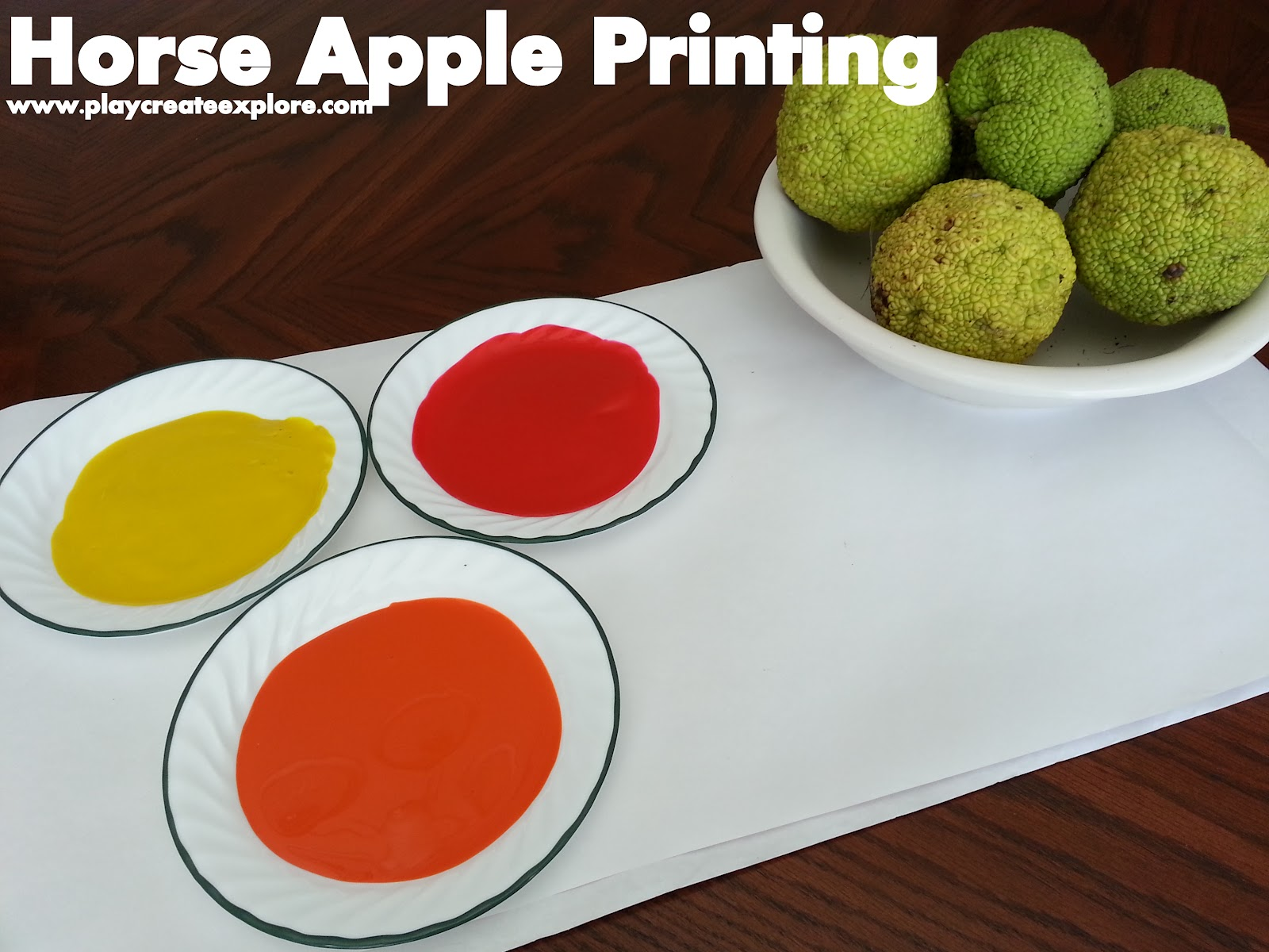 Play Create Explore Painting And Printing With Horse Apples