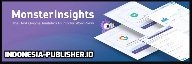Plugin Wordpress MonsterInsights Lite