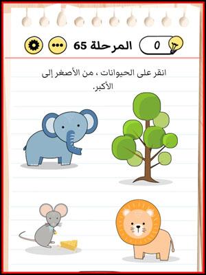 حل Brain Test المستوى 65
