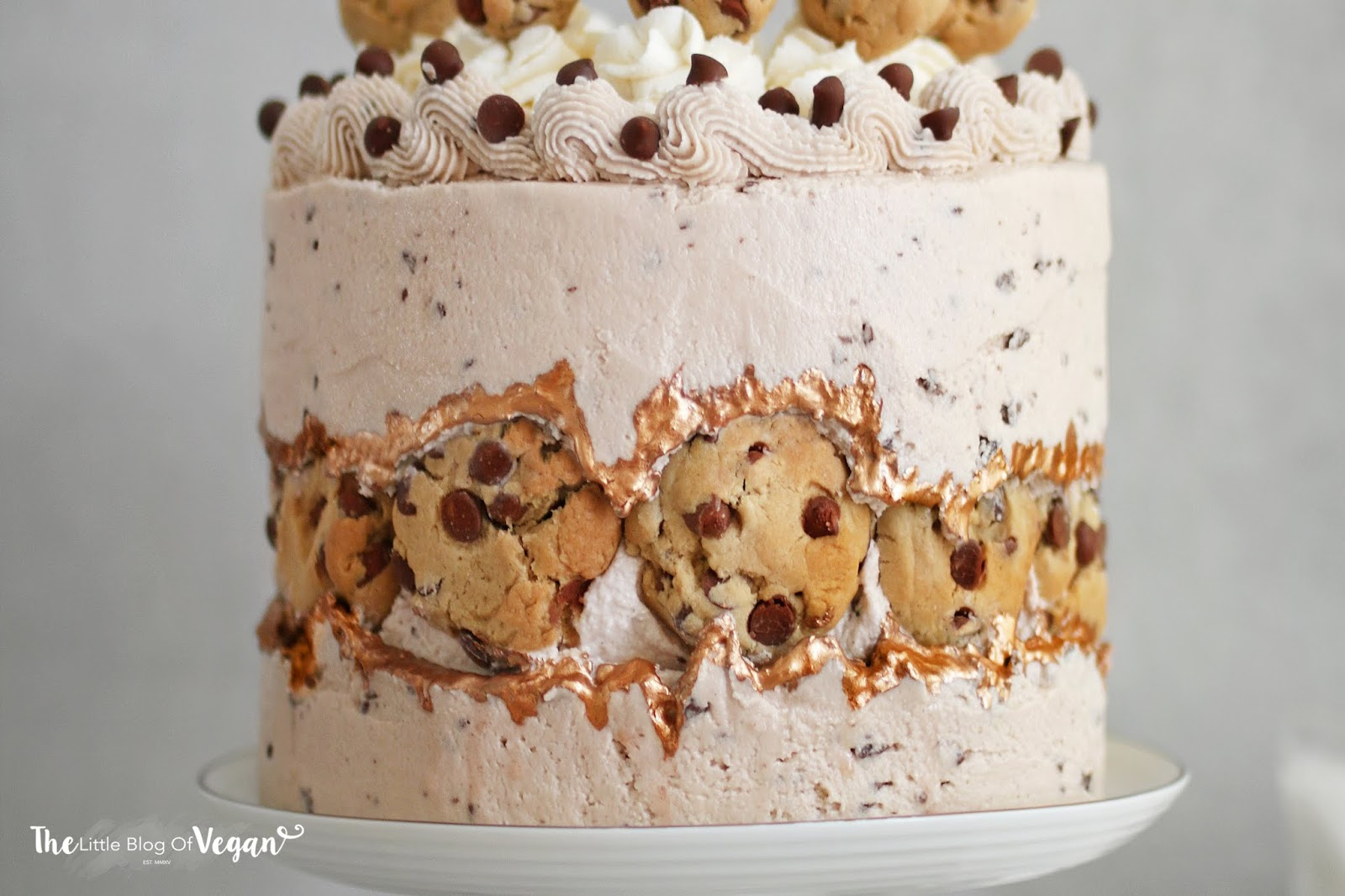 Chocolate chip cookie fault line cake   Ft DeDietrich