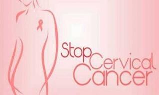 Kubis Dan Brokoli Efektif Cegah Kanker Rahim