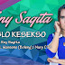 (7.37 MB) Download Eny Sagita - Jomblo Kesekso Mp3