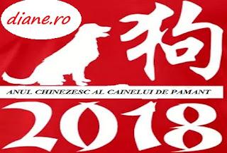 2018: Anul chinezesc al Câinelui de Pământ