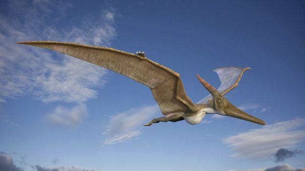 Dinosaur ancestors 'may have been tiny'
