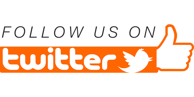 twitter_takip_butonu_eklenti_blogger