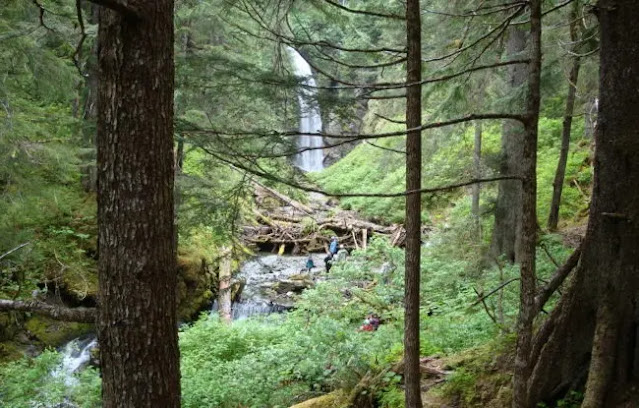 Sitka's challenging mountain trails in Sitka, Alaska