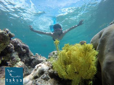 paket travel dan snorkling pulau tabuhan