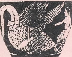 apollo cigno iperborea