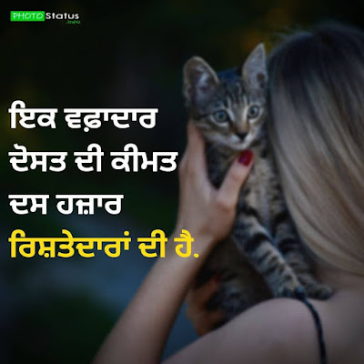 Punjabi Gadar Status