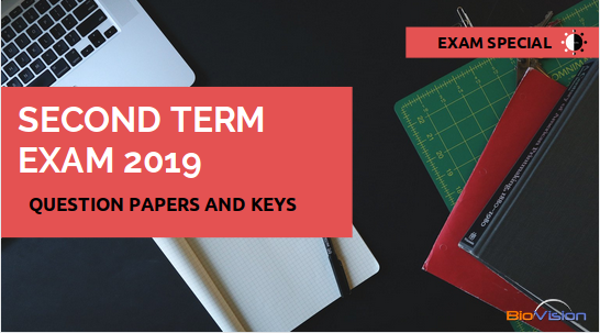 SECOND TERM EXAM 2019 - MALAYALAM AND ENGLISH MEDIUM QUESTION PAPERS AND ANSWER KEYS