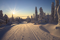 adventure cold cross country skiing