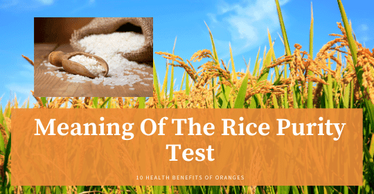 Rice Purity Test Meaning