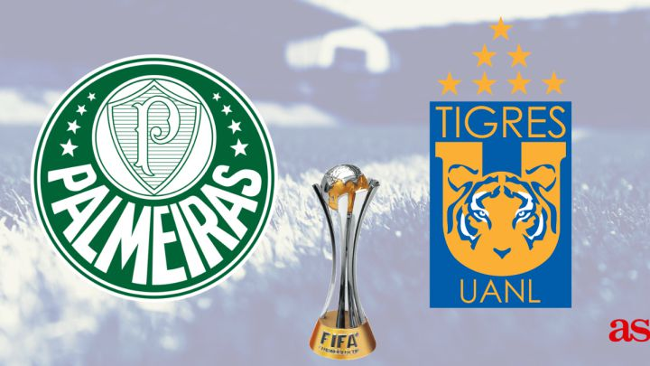 بث مباشر مباراة بالميراس وتيجريس اونال