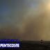 Exclusivo: incêndio criminoso polui os céus de Pentecoste, mata animais e deixa famílias desesperadas