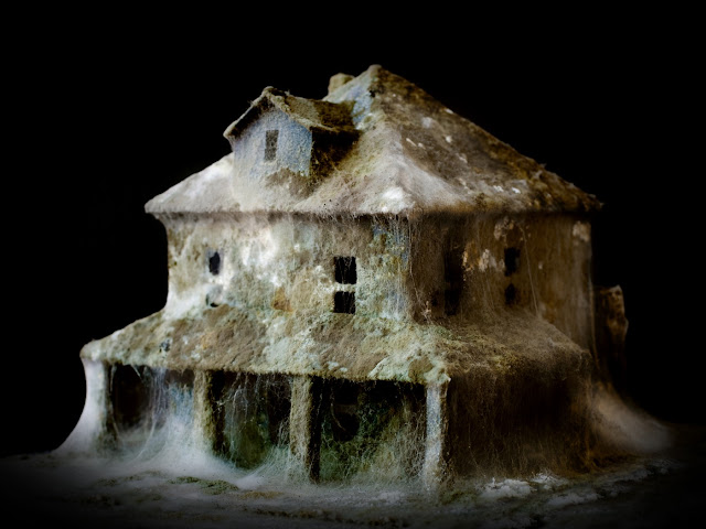 mold house visual effects daniele del nero art