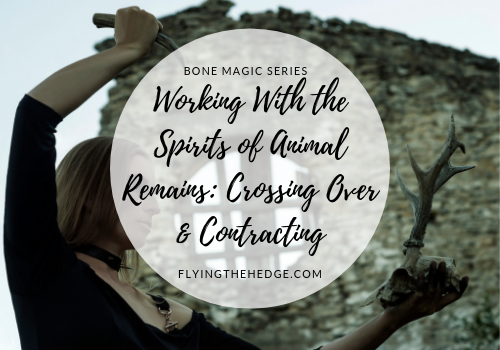 Bone Magic Series: Working With the Spirits of Animal Remains: Crossing Over & Contracting