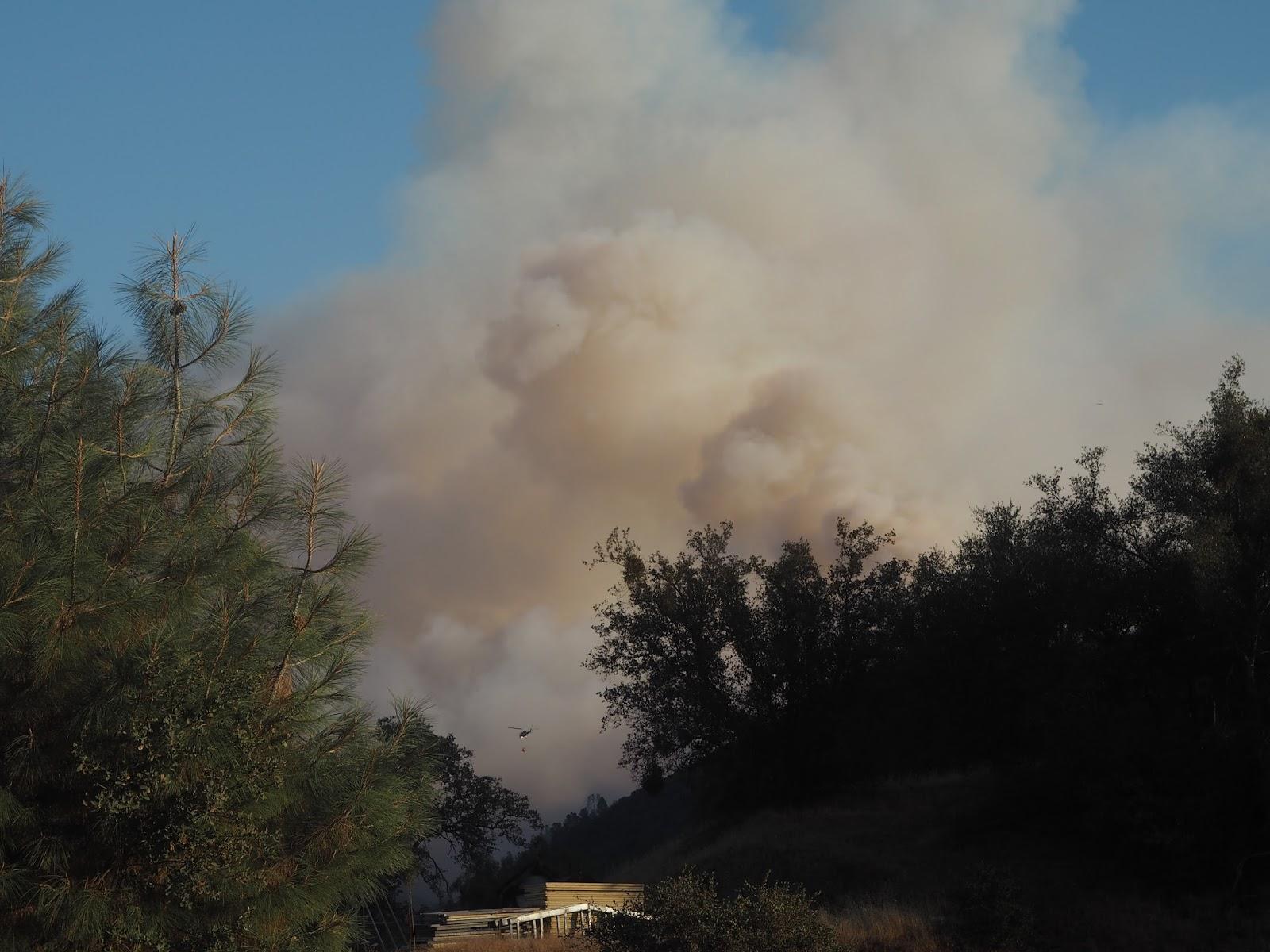Fire in Yosemite National Park, California