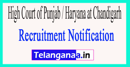 High Court of Punjab / Haryana at Chandigarh Recruitment Notification