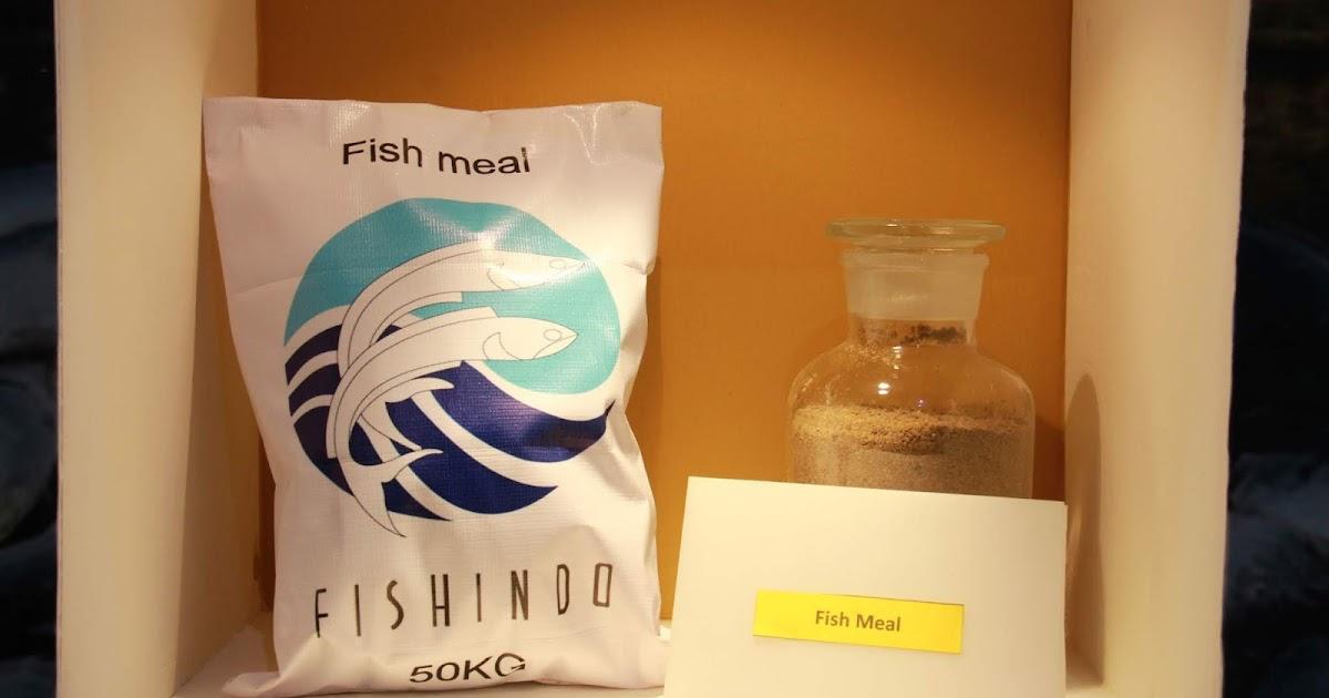 FISH PT FKS Multi Agro Tbk Alami Penurunan Laba | Saham FISH
