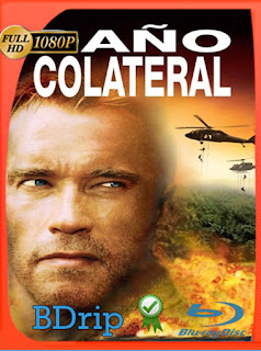 Daño colateral (2002) BDRIP [1080p] Latino [Google Drive] Panchirulo
