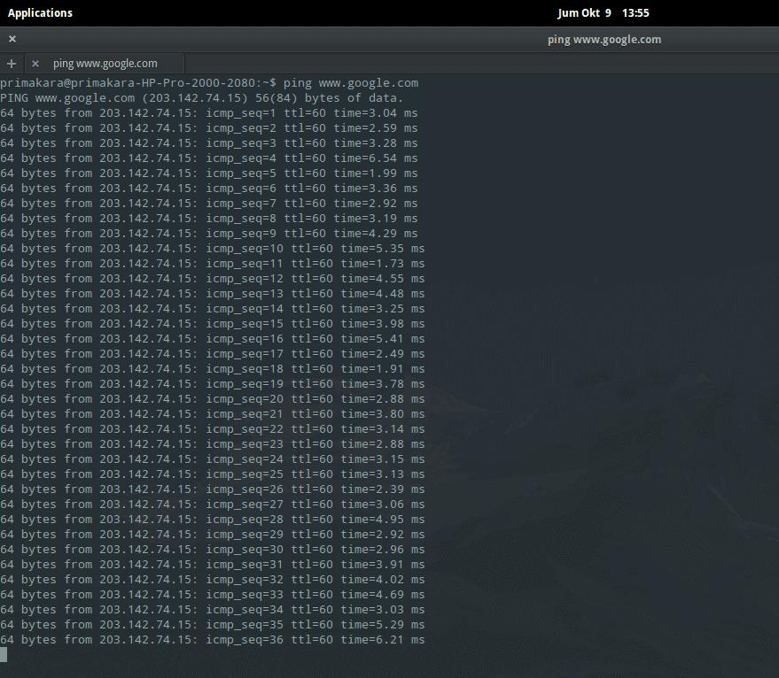Cara Melakukan Ping dan Traceroute Jaringan di Linux - Dika AW