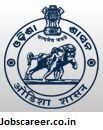ओडिशा एसएसएससी में 815 पदों के लिए जूनियर क्लर्क की रिक्तियां : अंतिम तिथि 08/09/2017