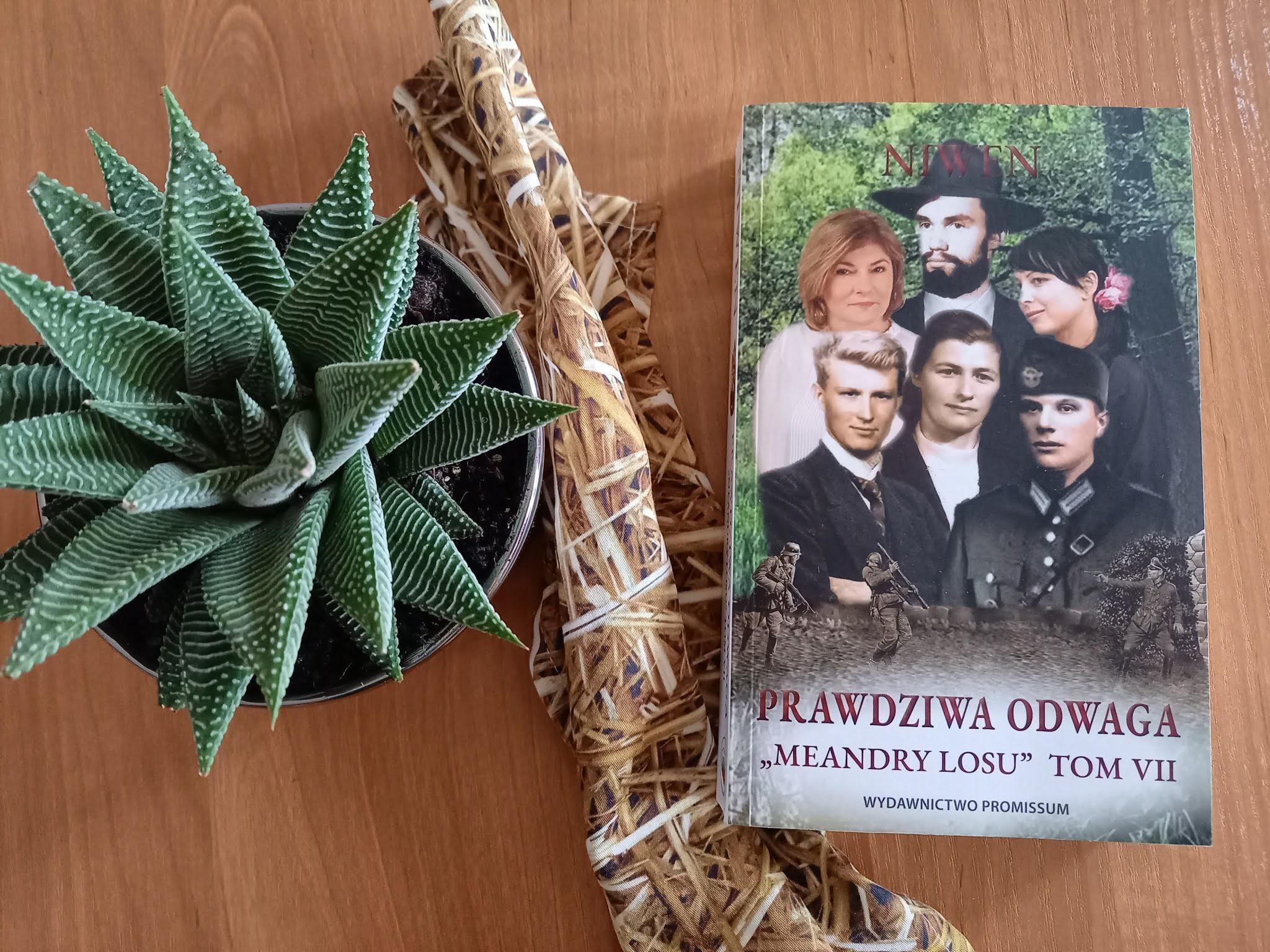 """Wojna skłania do różnych czynów, czyli recenzja powieści """"Prawdziwa odwaga"""" autorstwa NIWENA"""