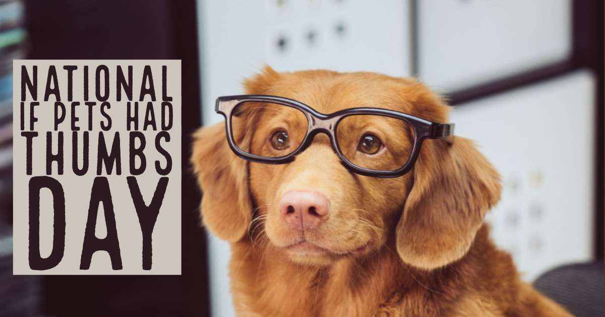 National If Pets Had Thumbs Day Wishes For Facebook