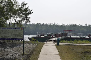 Harbaria of Sundarban