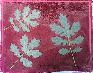 Solarfast prints_Sue Reno_Image 6
