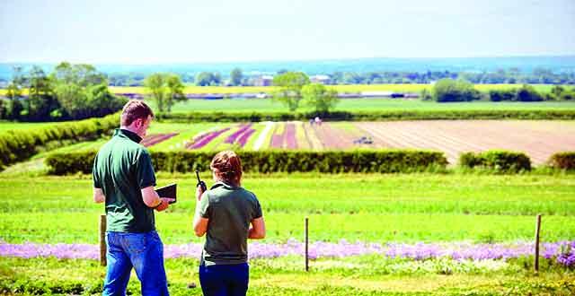 agricultureकृषि में है अपार संभावनाएं, युवा कृषि में बनाएं अपना कॅरियर