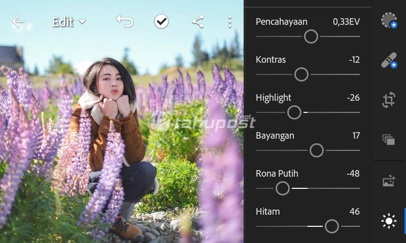 Preset Lightroom Ala Selebgram - Butterfly Pea Menu Light