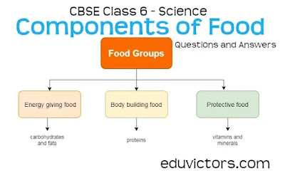 CBSE Class 6 - Science - Chapter 2: Components of Food (Questions and Answers)(#class6Science)(#componentsOfFood)(#eduvictors)