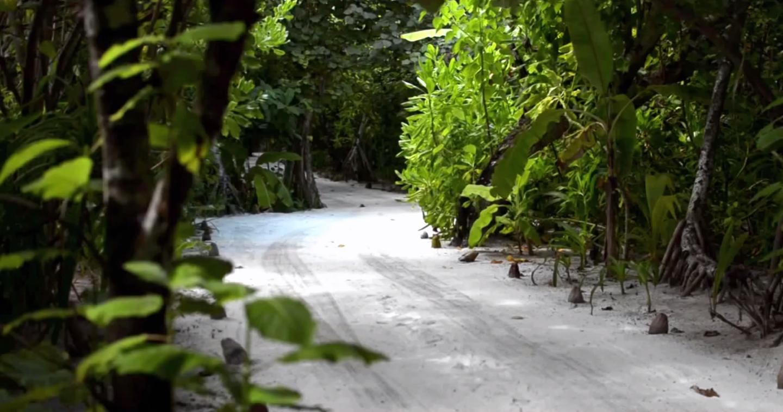 Maldivas | Turismo nas Ilhas Maldivas