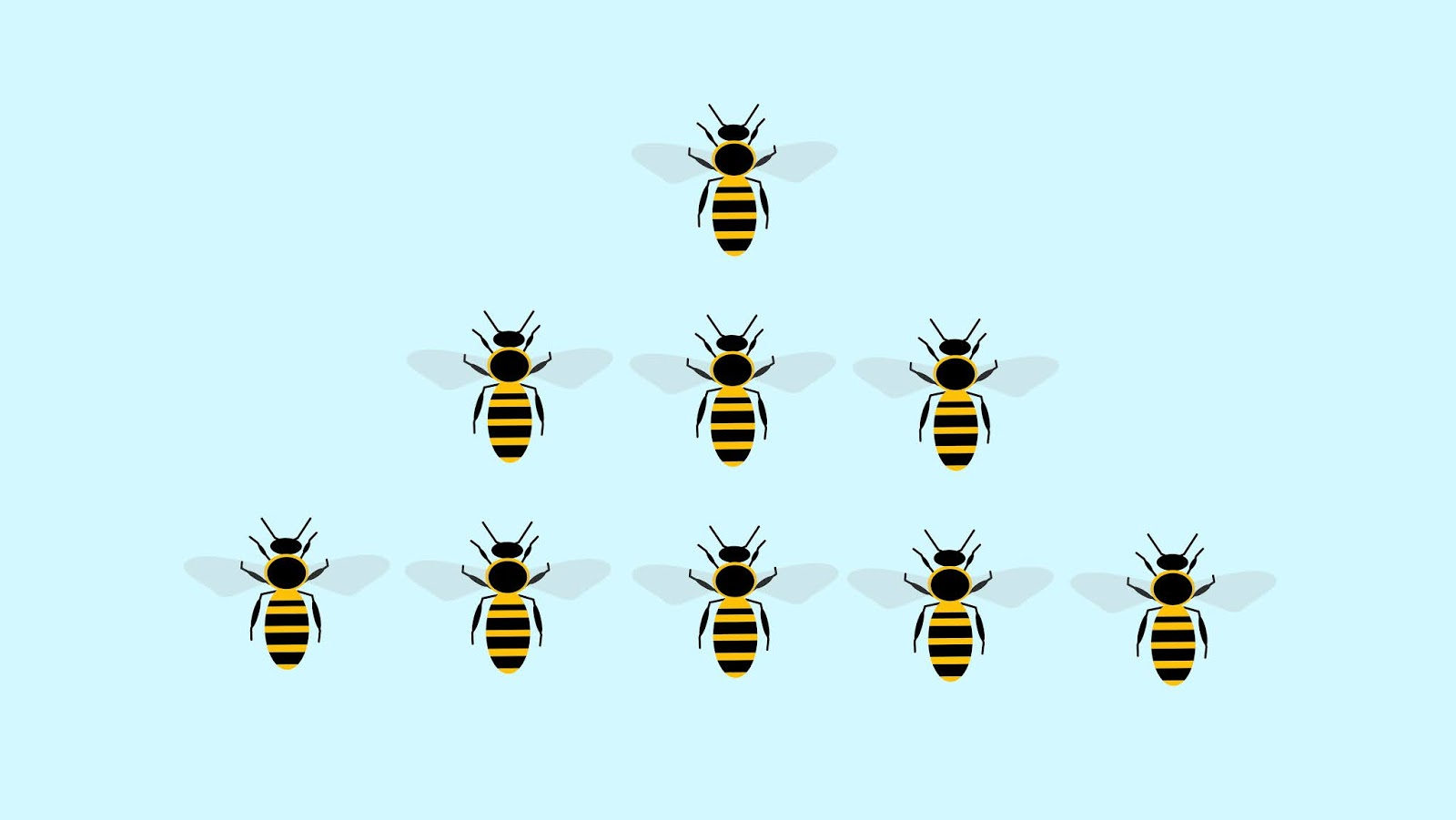 Illustration of organized bee's group