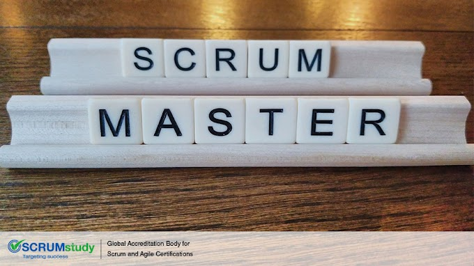 多樣貌的Scrum Master