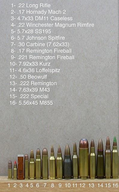 Jenis Jenis Peluru
