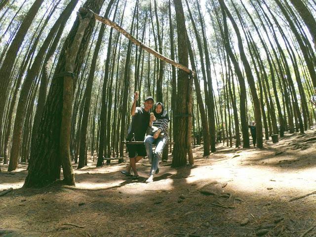 romantis di hutan pinus mangunan jogja