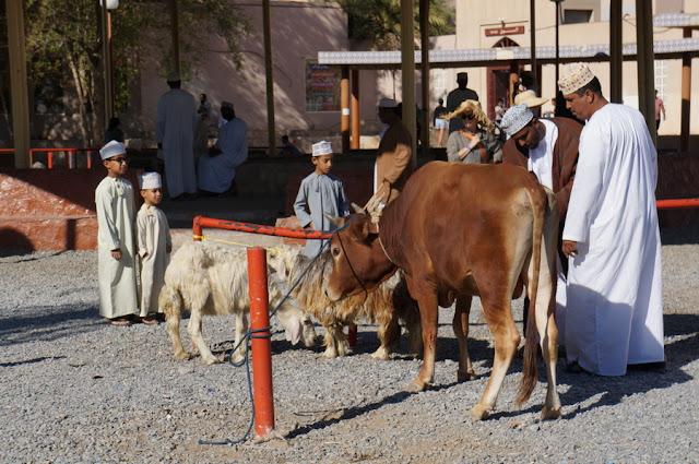 Mercado de Cabras de Nizwa