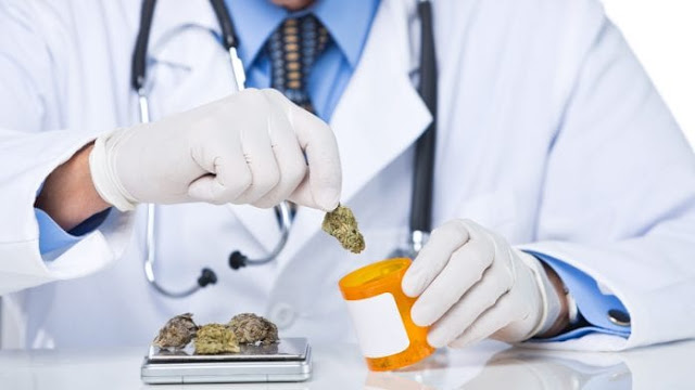 Australia to fund research on medicinal cannabis as demand grows