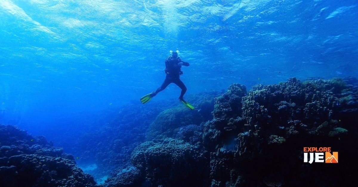 pulau menjangan underwater