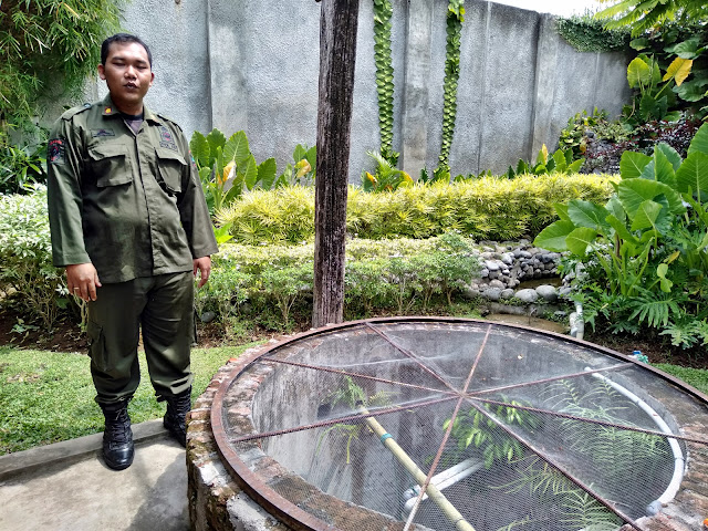 sumur legenda banyuwangi pendopo