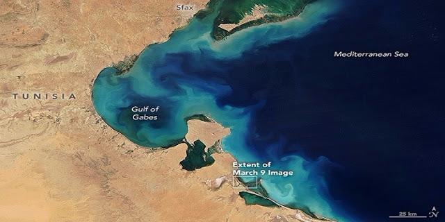 قابس: اكتشاف اكبر حقل غاز في افريقيا بـ9100 تريليون متر مكعب.. سيجعل تونس السادسة عالميا