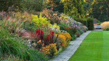 15 borduras de herbáceas perennes donde encontrar inspiración