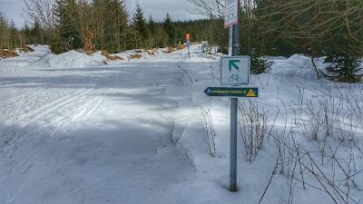 Winter Schnee Laufen Rennsteiglauf