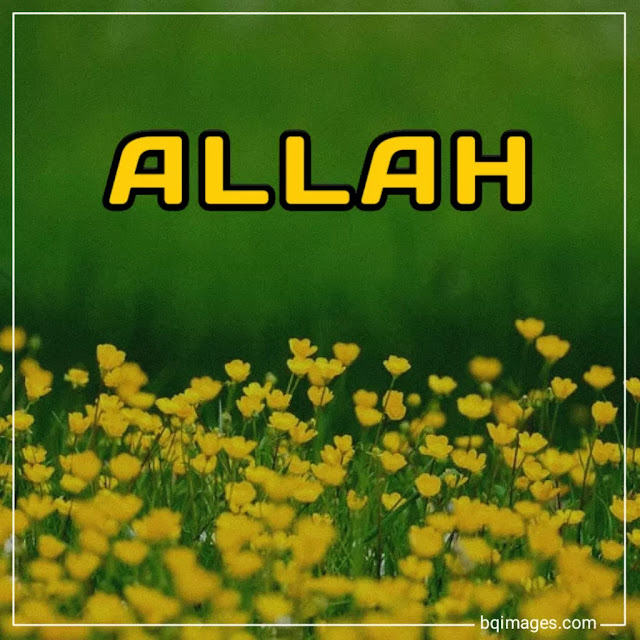 allah images dp in english