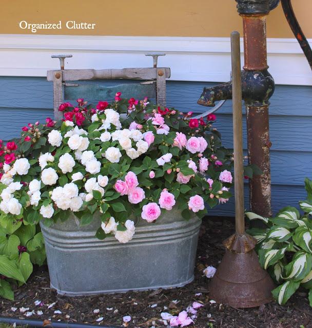 Junk Garden Vignette #shadegarden #containergarden