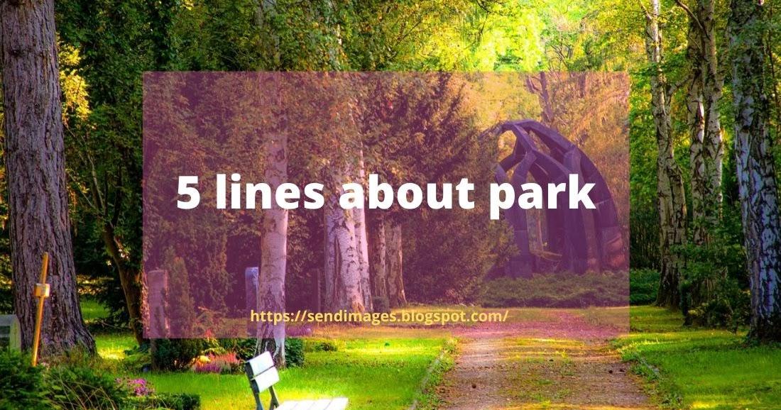 essay about park for children